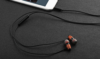 ES-60TY Music Earphone