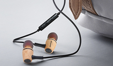 ES-80TY Music Earphone